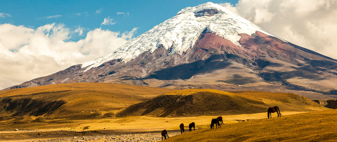 [Translate to Español:] Cotopaxi Cortado